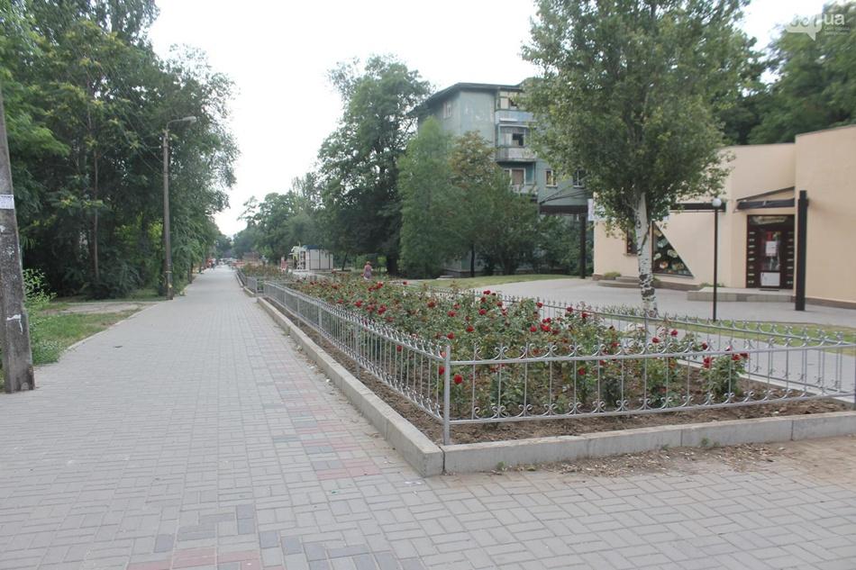 По мнению запорожцев, после реконструкции аллея стала похожа на кладбище | Фото 061
