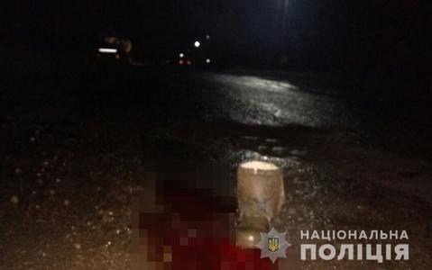 В запорожском селе машина сбила двух детей и скрылась - один мальчик погиб