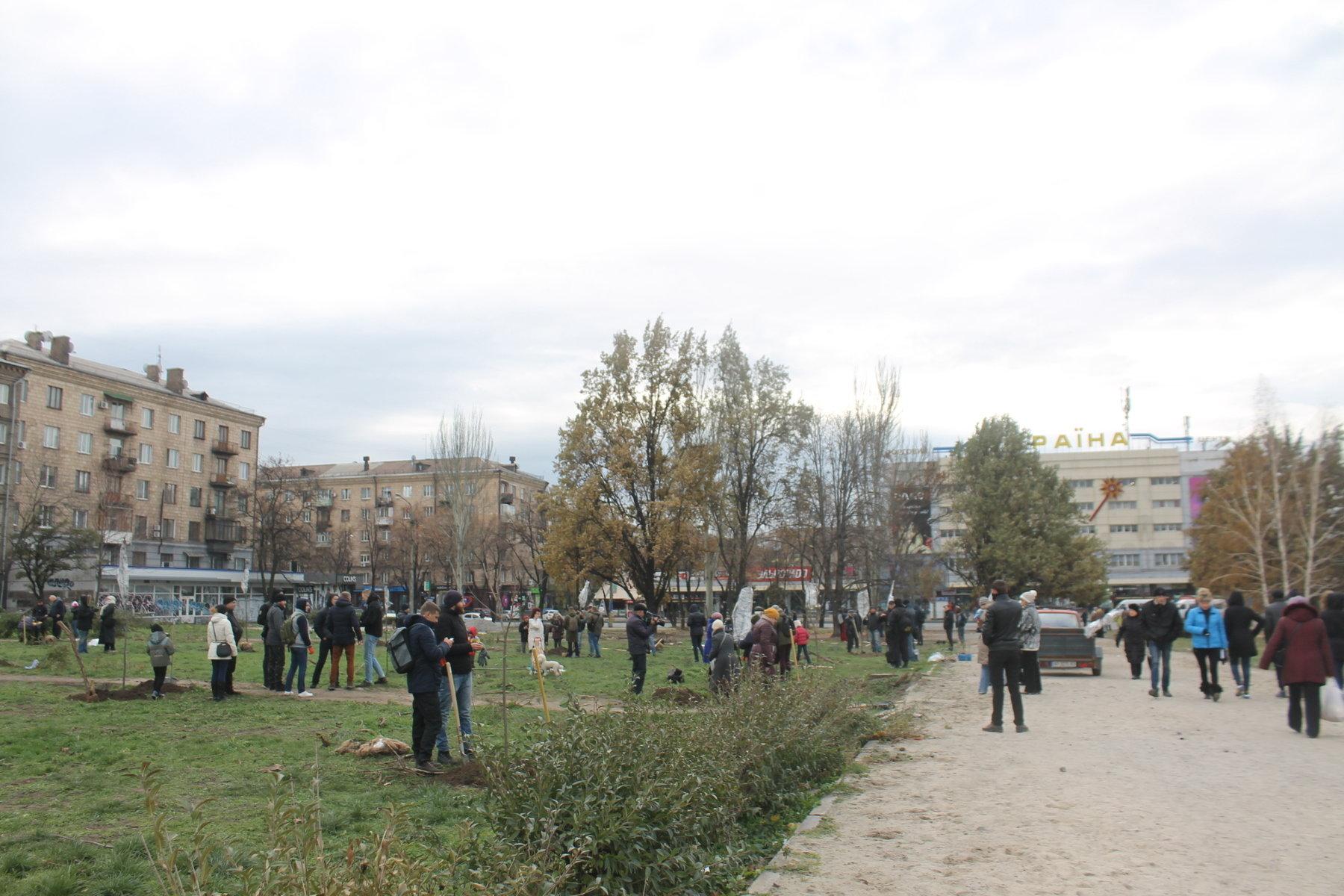 В запорожском сквере Яланского активисты высадили 30 молодых кленов, – ФОТОРЕПОРТАЖ