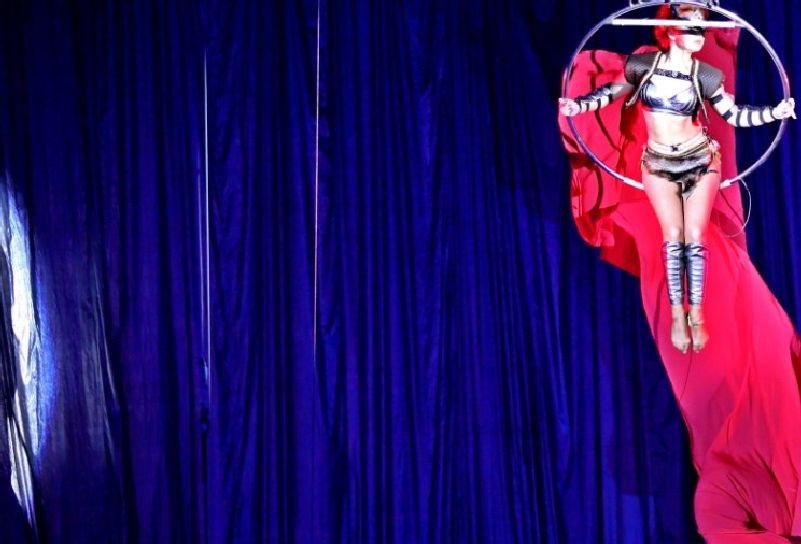 В запорожском цирке показали красивую премьеру - фото – Индустриалка