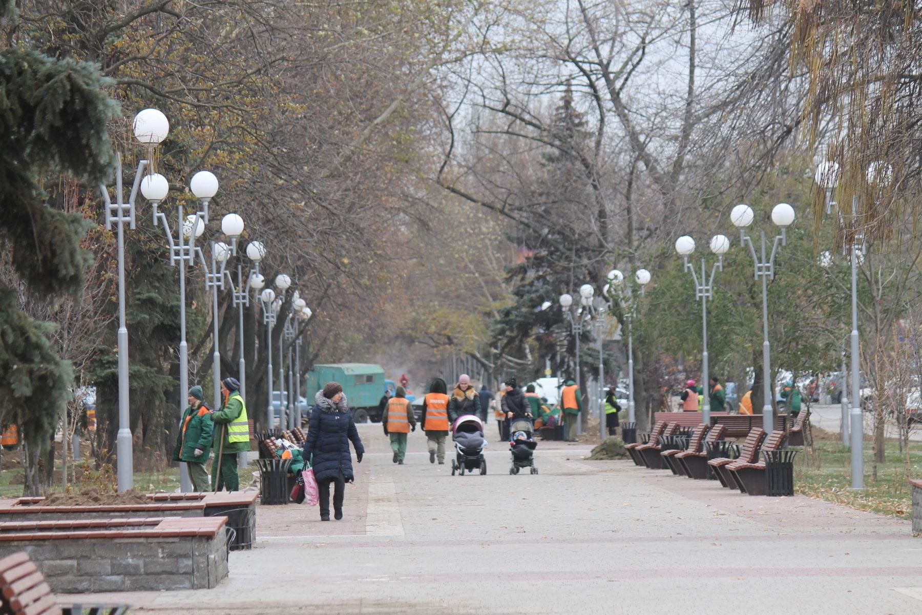В Запорожье закончили реконструкцию аллеи на Маяковского: коммунальщики высадили деревья и газоны, – ФОТОРЕПОРТАЖ