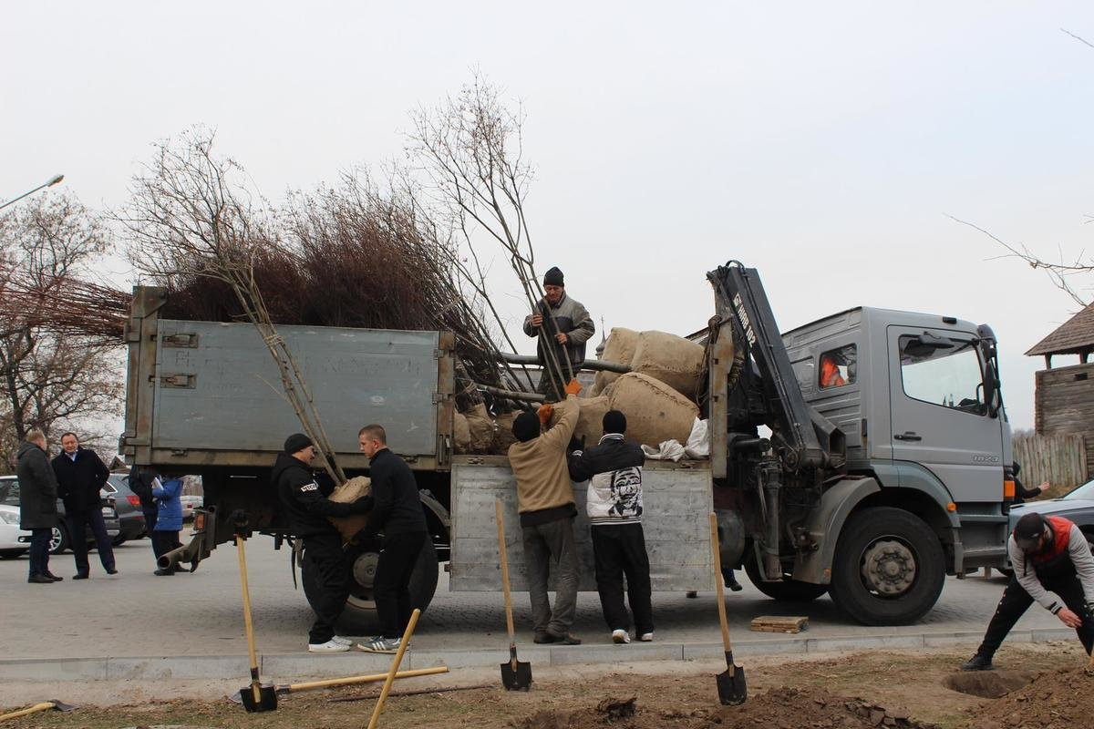 В Запорожье на Хортице высадили 550 саженцев молодых деревьев и кустарников, - ФОТО