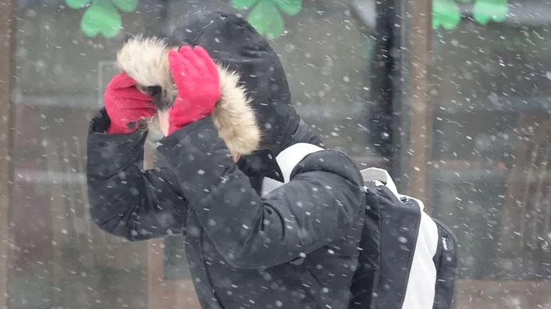 В Запорожье ожидается мокрый снег и сильный ветер
