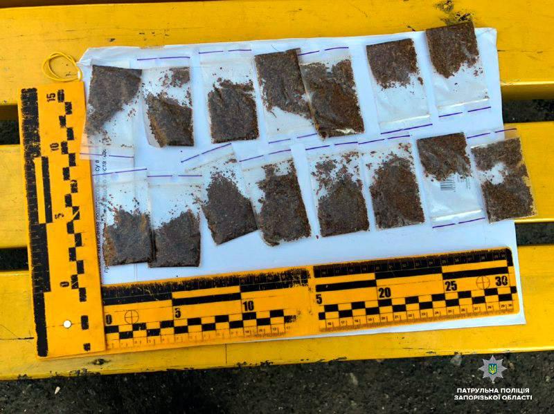В Запорожье по улицам разгуливал мужчина с наркотиками в кармане – Индустриалка