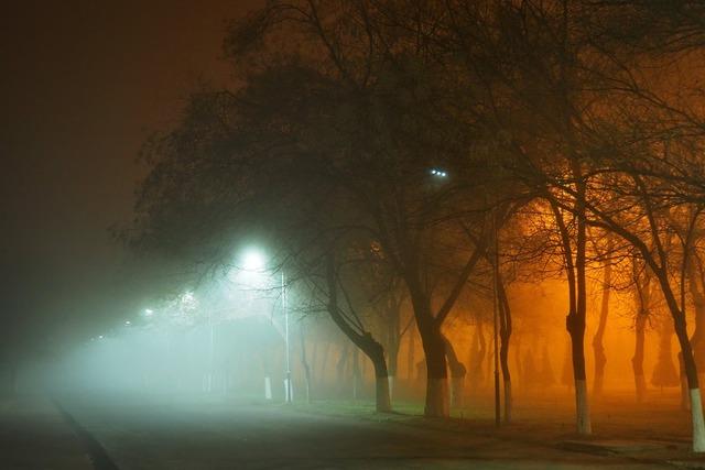 В Запорожье прогнозируют туман и дожди