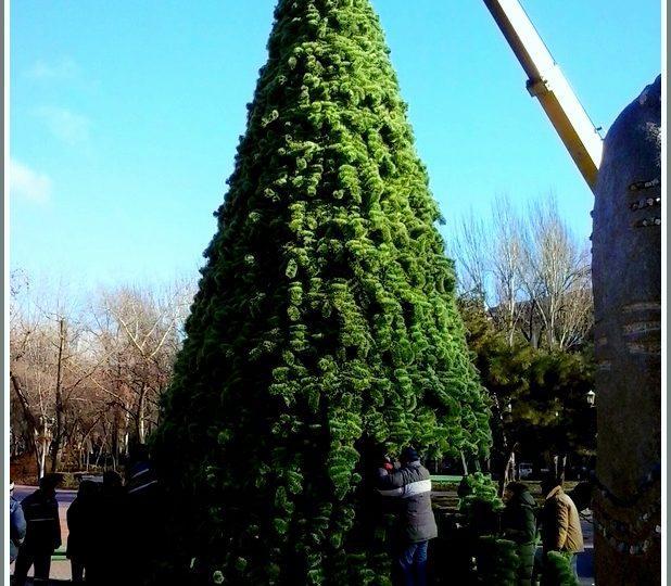 В Запорожье уже начали установку городской елки