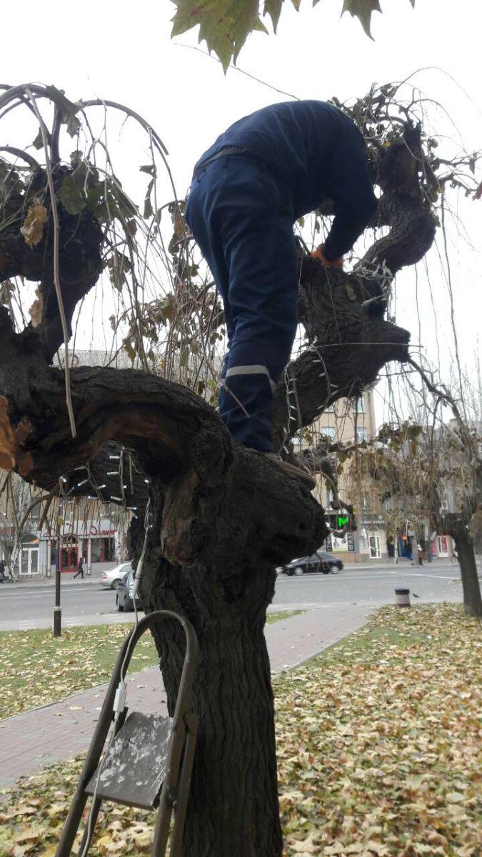В Мелитополе уже начали подготовку к Новому году