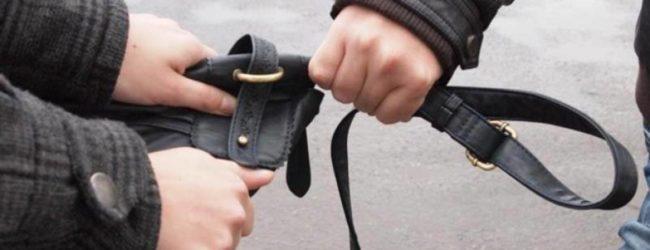 В Хортицком районе неизвестный напал на женщину и похитил ее личные вещи
