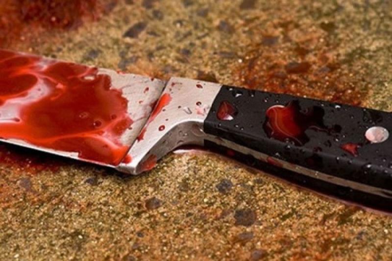 Житель Запорожской области убил гостя, приревновав его к сожительнице