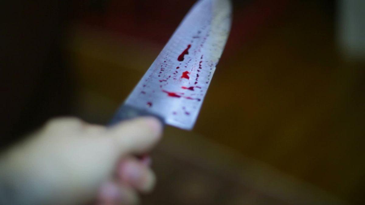 Житель Запорожья зарезал своего сына – Индустриалка