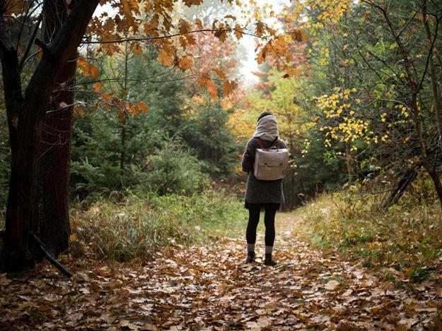 Захвати зонтик: какая погода в Запорожье 19 ноября