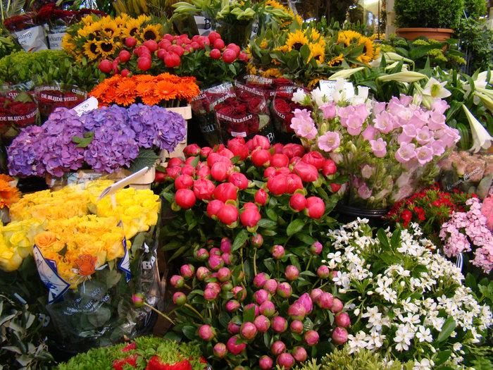 На Бабурке хотят организовать коммунальный цветочный рынок