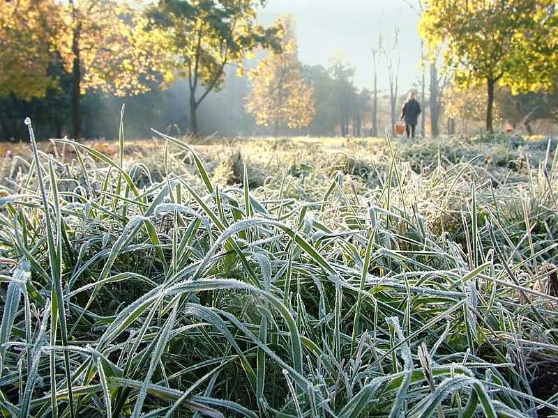 На выходных жителей Запорожья и области ждут первые морозы
