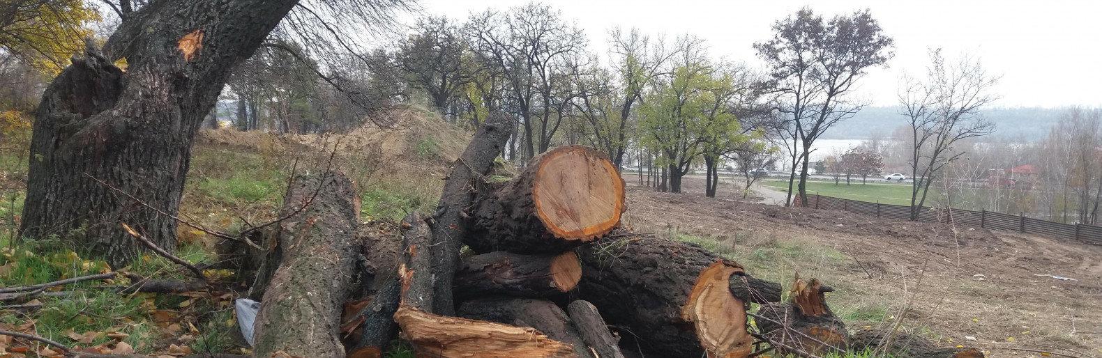 На озеленение парка на Набережной добавили еще 8 миллионов, хотя должны были это сделать на предыдущие 10 млн гривен
