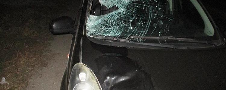 Под Запорожьем на трассе насмерть сбили пешехода, – ФОТО