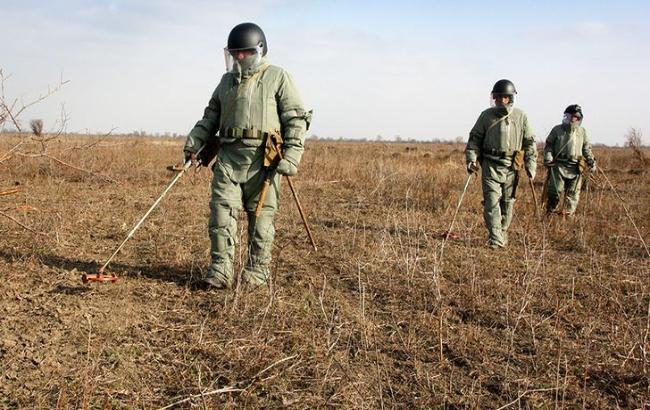 Под Запорожьем обезвредили четыре десятка минометных мин