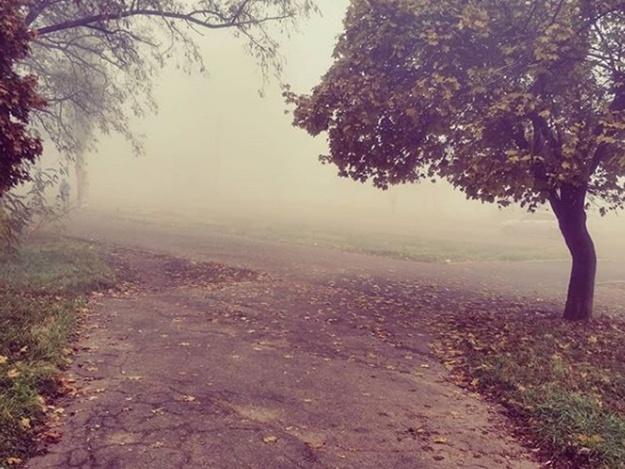Подсмотрено в Instagram: фотографии туманного Запорожья