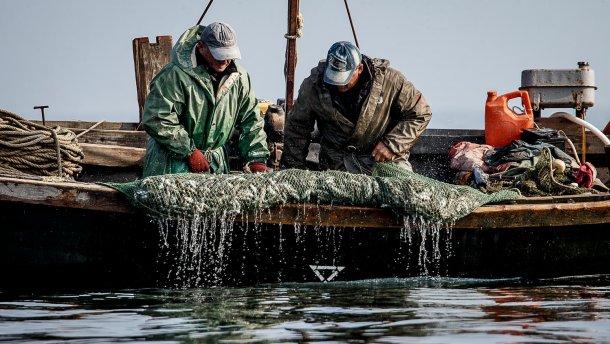 Российские пограничники заявили о задержании в Азовском море украинских рыбаков