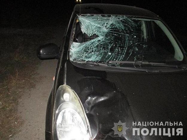 Смертельное ДТП под Запорожьем: на трассе легковушка насмерть сбила пешехода