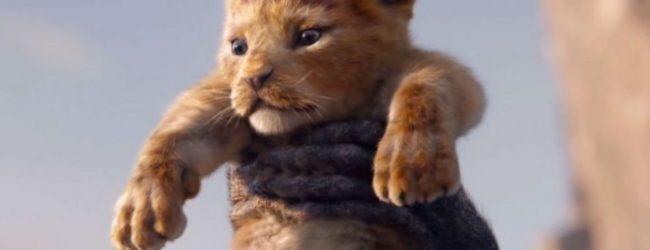 Трейлер мультфильма «Король Лев» разделил пользователей сети