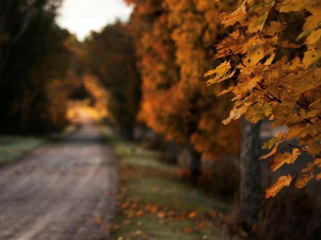 Укутывайся потеплее: какая погода в Запорожье 20 ноября