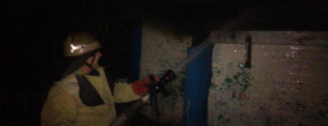 В запорожском селе тушили пожар на территории дома