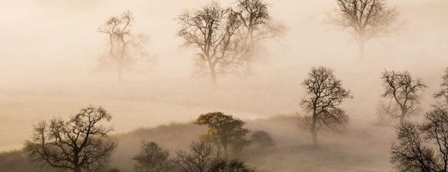 В Запорожье ожидается туман и гололедица