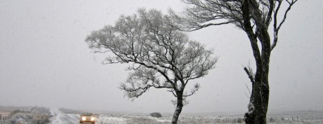 В Запорожье ожидают сильные порывы ветра, гололедица и небольшой снег