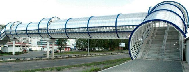 В Запорожье предлагают построить надземный переход возле Дубовой рощи