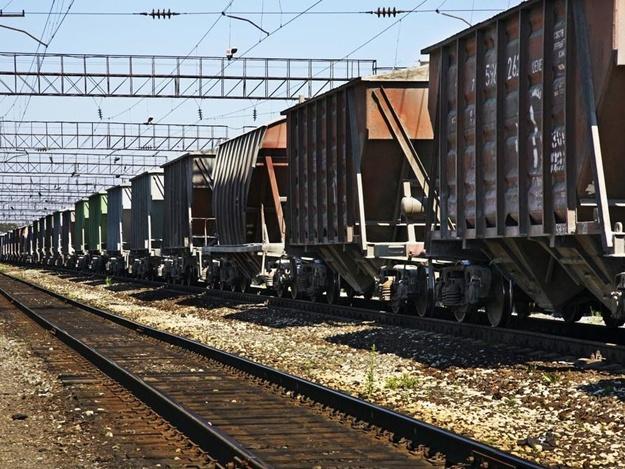 Далеко не убежал: под Запорожьем злоумышленник воровал детали вагонов поезда