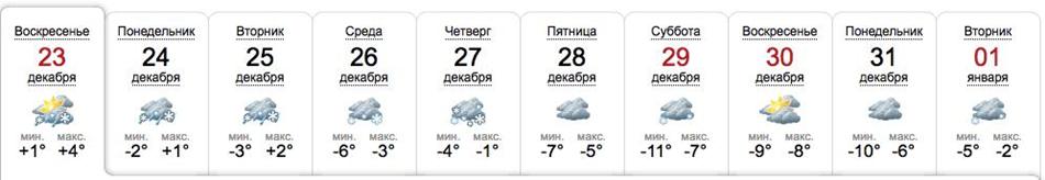 Погода в Запорожье в последнюю неделю 2018 года. источник: sinoptik
