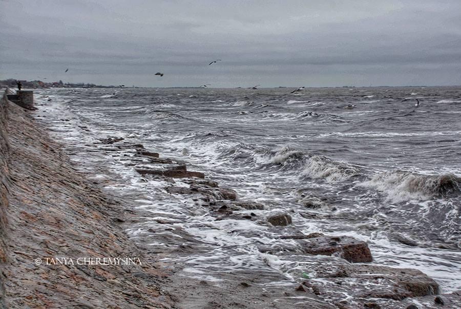 Бушующее побережье