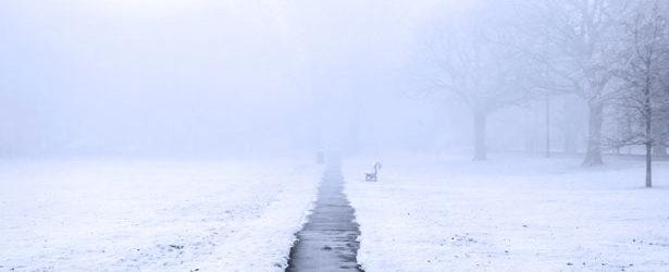 В Запорожье ожидается туман, осадки и плюсовая температура