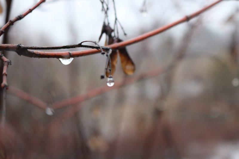 В эти дни на Хортице - то дождь, то снег