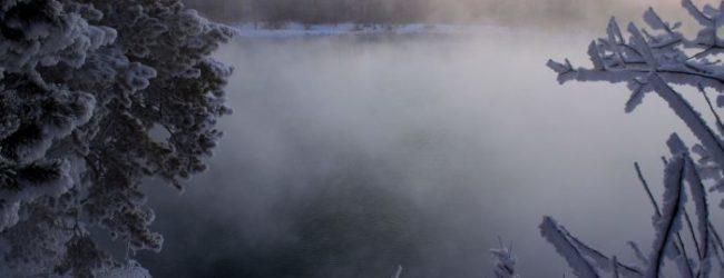 В Запорожье прогнозируют сильный туман и потепление
