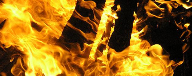В Мелитополе спасатели тушили пожар во дворе дома