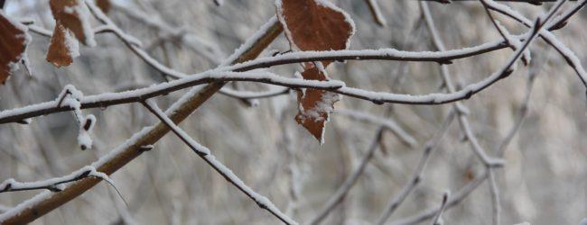 Ухудшение погодных условий в Запорожье: ожидается туман и гололедица