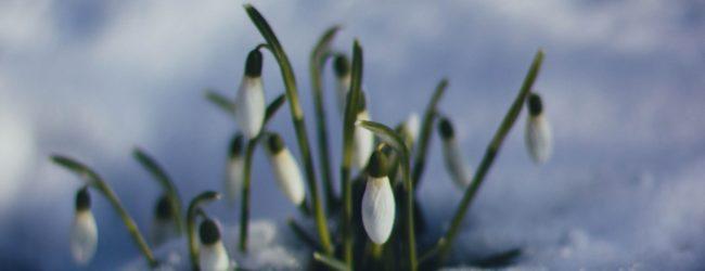 В Запорожье зафиксировали новый температурный рекорд