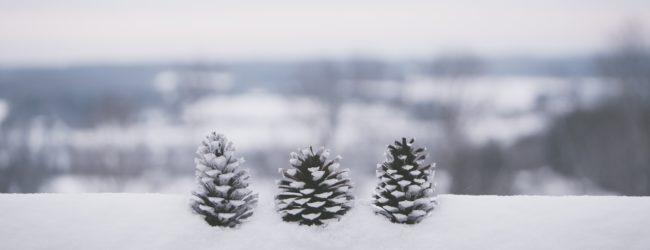 В конце февраля в Запорожье ожидается похолодание – синоптик