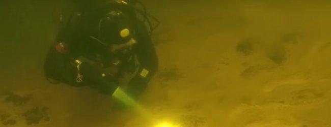 Запорожский дайвер показал подводный мир реки Днепр (ВИДЕО)