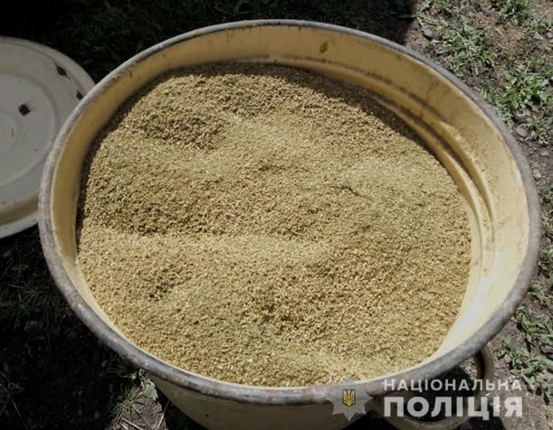 полиция изъяла 4 кг марихуаны
