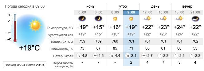 Погода в Запорожье на 6 августа. sinoptik.ua