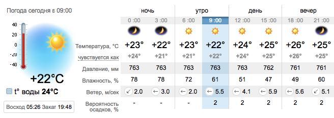 Погода в Бердянске на 13 августа. sinoptik.ua