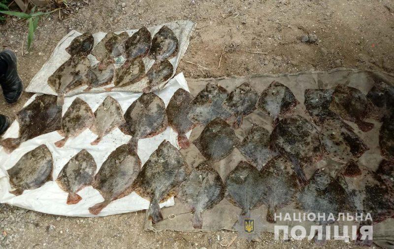 В Азовском море задержали браконьеров