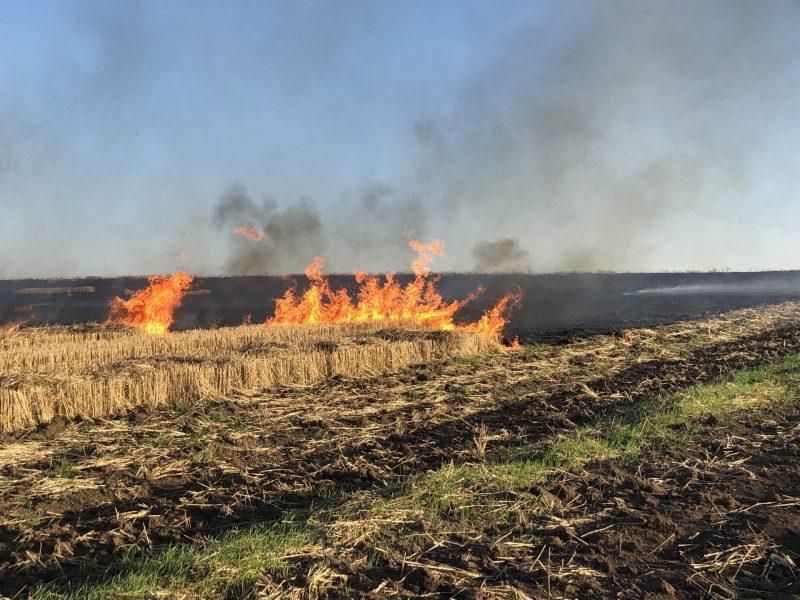 поле пожар