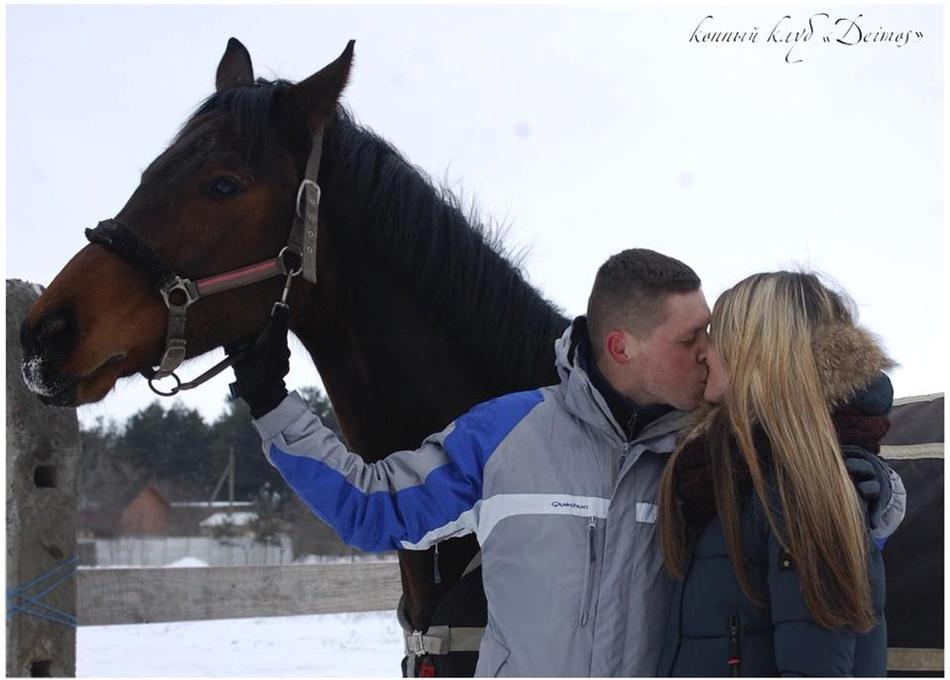 Где покататься на лошадях в Запорожье / фото: fb Конный клуб