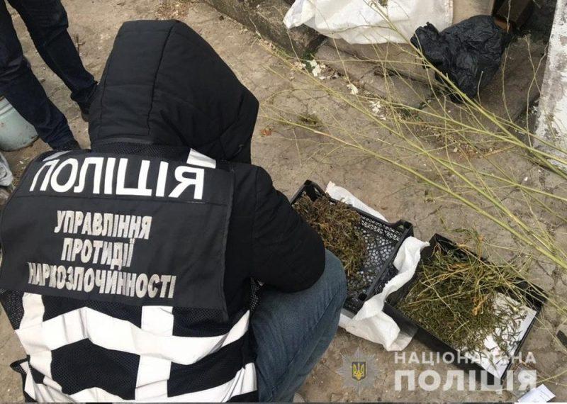 Полицейские изъяли наркотики