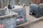 В Запорожье вандалы продолжают уничтожать контейнеры