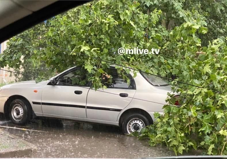 Непогода в Мелитополе валила деревья