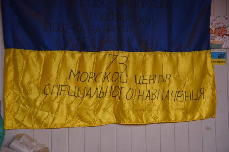 кикиморы флаг